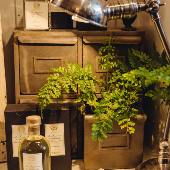Home Accessories and Greenery - Home Decor The Iron Grade